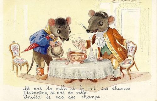 rat ville rat champs