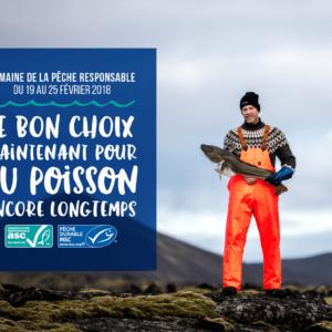 Préservation des océans : on en parle pour la semaine de la pêche responsable !