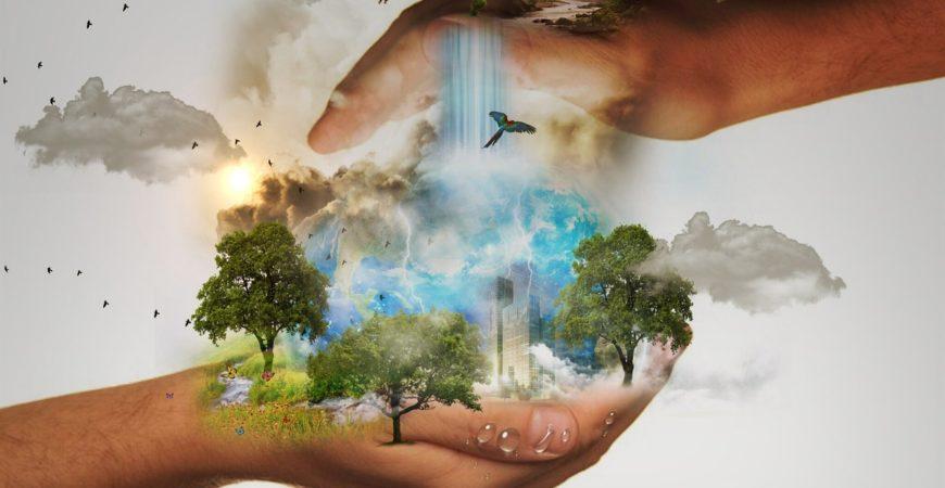 Nos petits gestes écolos ne sauveront pas la planète